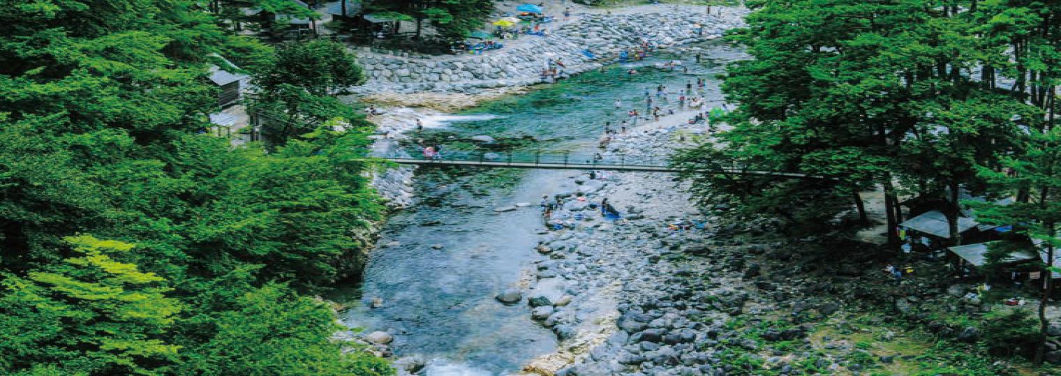 中津川市駒場 全国に誇る東美濃の栗